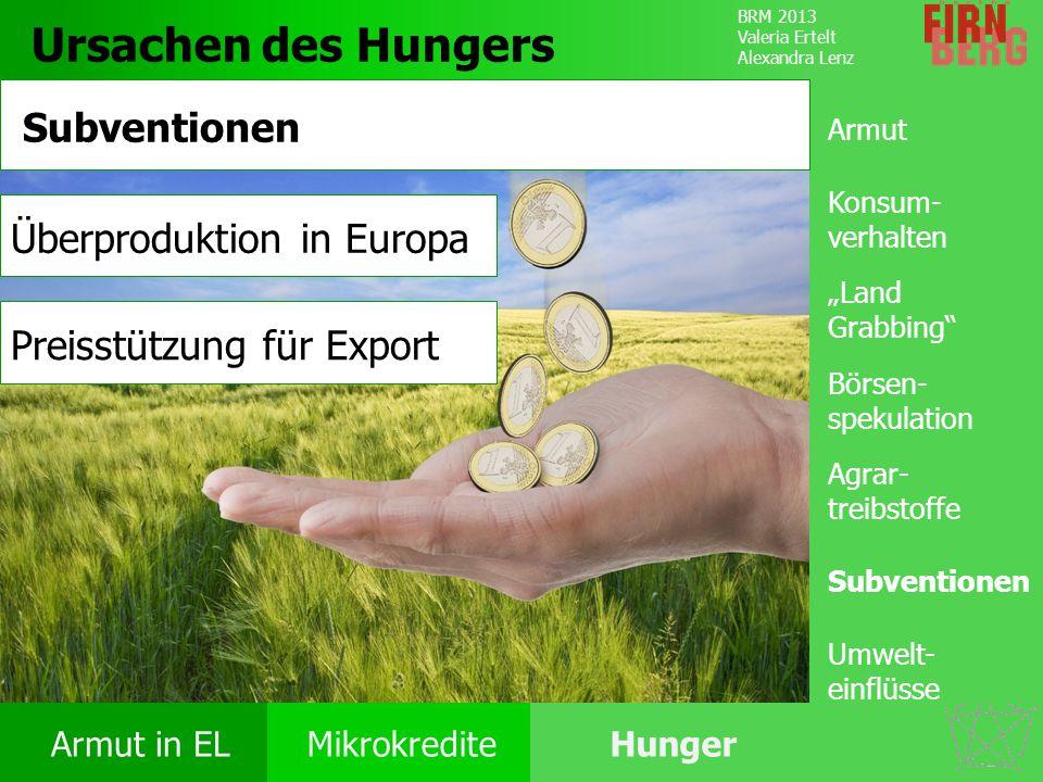 Ursachen des Hungers Subventionen Überproduktion in Europa