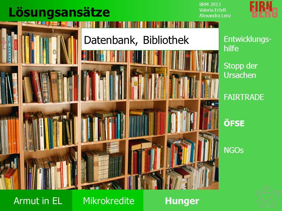Lösungsansätze Datenbank, Bibliothek Entwicklungs-hilfe