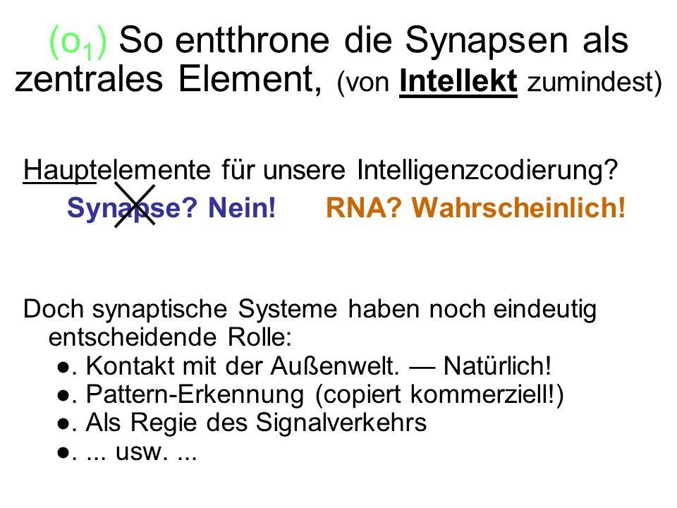 (o1) So entthrone die Synapsen als zentrales Element, (von Intellekt zumindest)