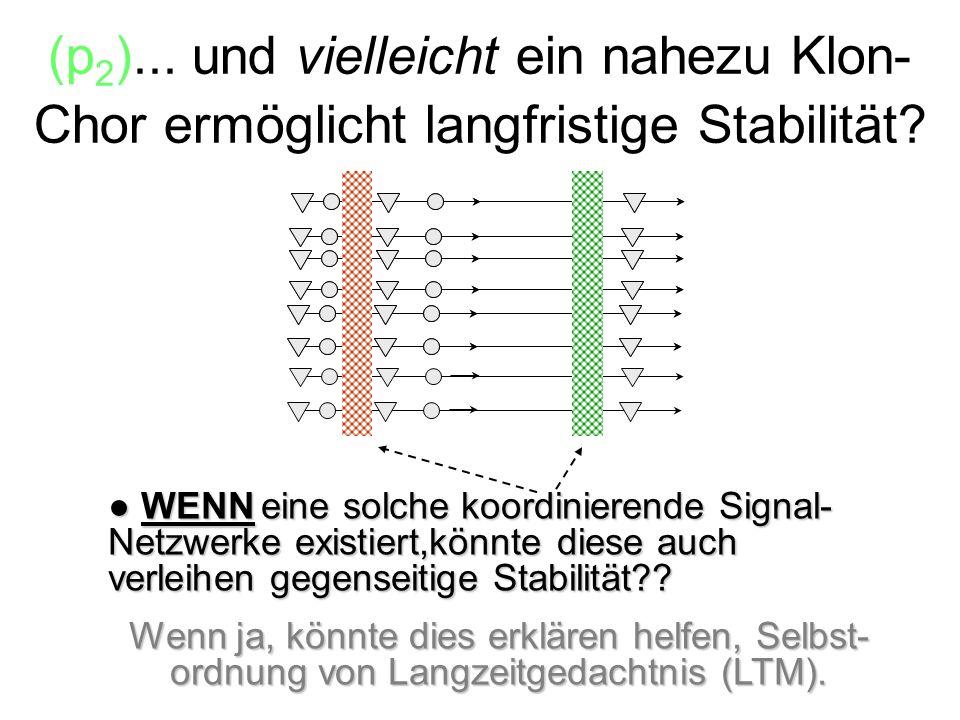 (p2)... und vielleicht ein nahezu Klon-Chor ermöglicht langfristige Stabilität