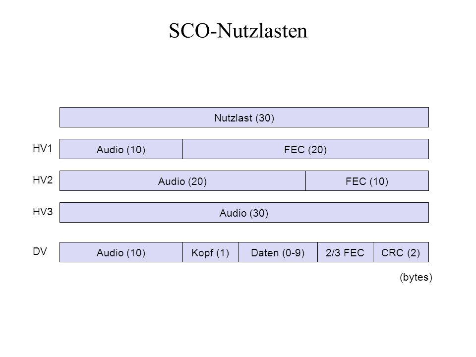 SCO-Nutzlasten Nutzlast (30) HV1 Audio (10) FEC (20) HV2 Audio (20)