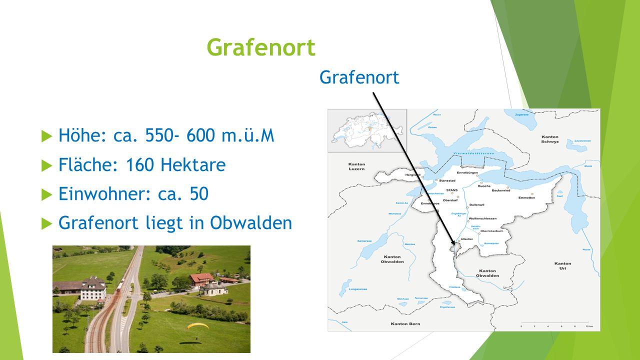 Grafenort Grafenort Höhe: ca. 550- 600 m.ü.M Fläche: 160 Hektare