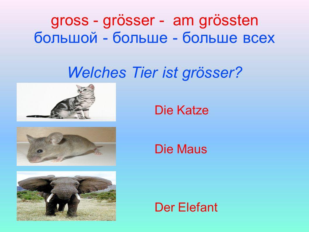gross - grösser - am grössten большой - больше - больше всех Welches Tier ist grösser