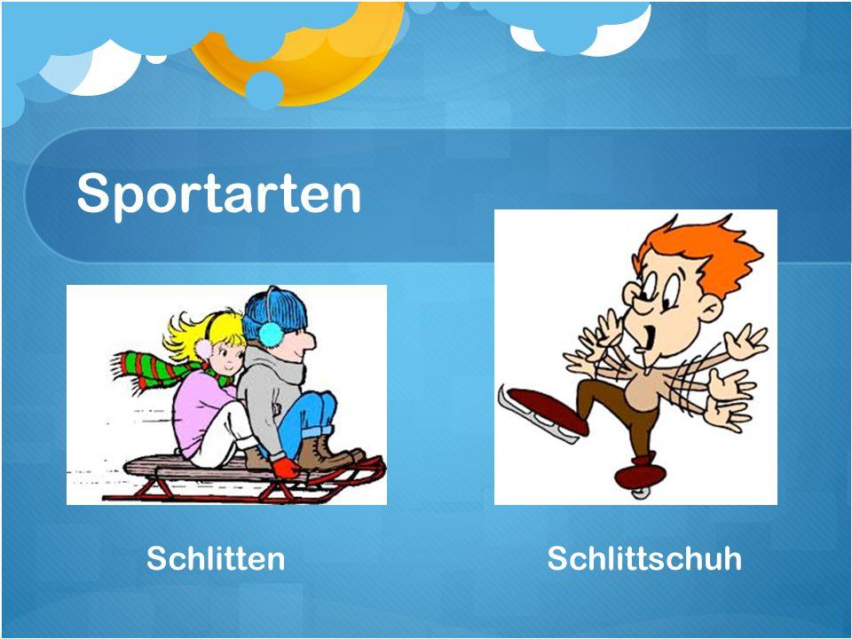 Sportarten Schlitten Schlittschuh