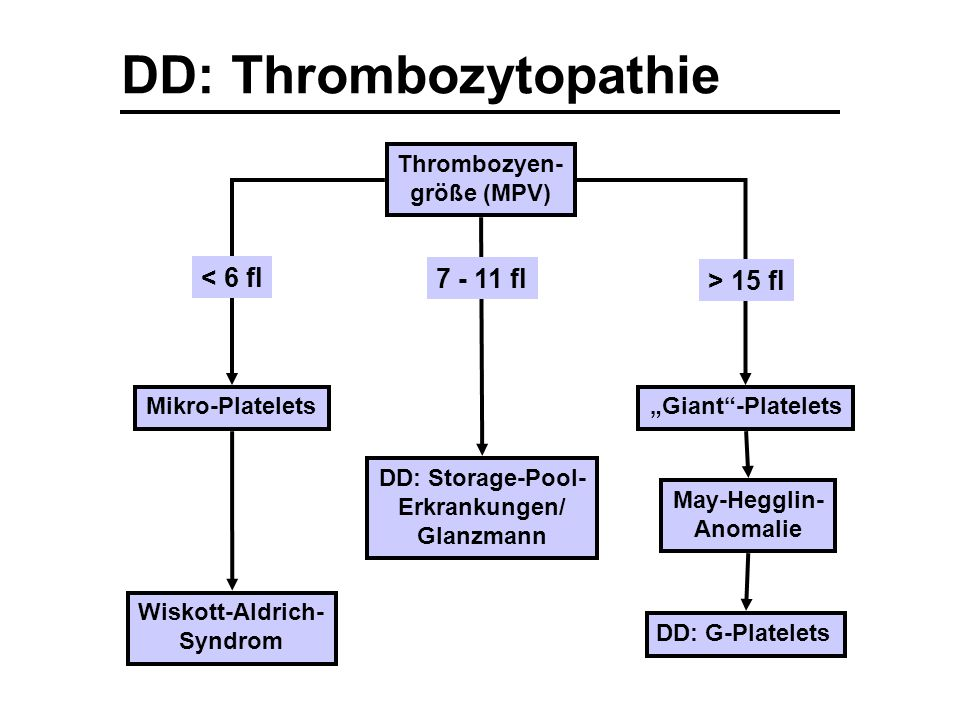 DD: Thrombozytopathie