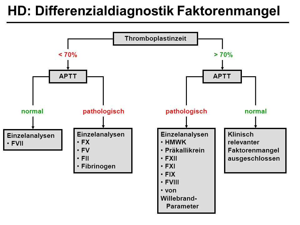 HD: Differenzialdiagnostik Faktorenmangel