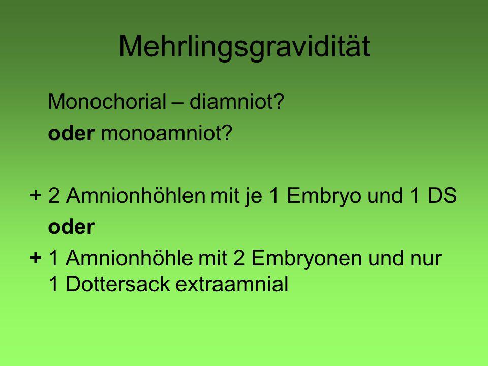 Mehrlingsgravidität Monochorial – diamniot oder monoamniot