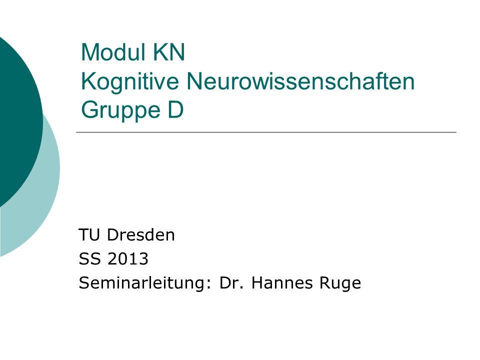 Modul KN Kognitive Neurowissenschaften Gruppe D