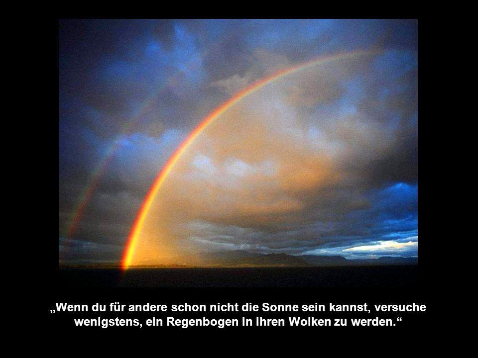 """""""Wenn du für andere schon nicht die Sonne sein kannst, versuche wenigstens, ein Regenbogen in ihren Wolken zu werden."""
