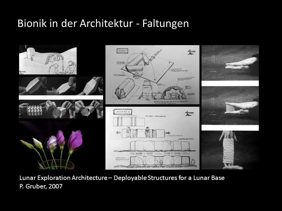 Bionik in der Architektur - Faltungen