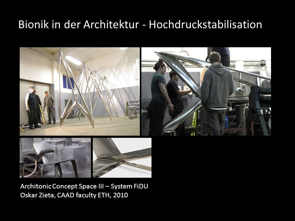 Bionik in der Architektur - Hochdruckstabilisation