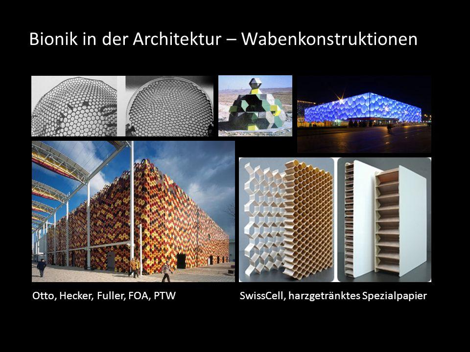 Bionik in der Architektur – Wabenkonstruktionen