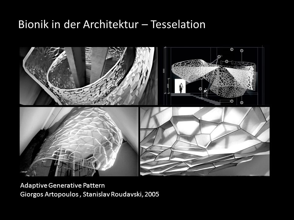 Bionik in der Architektur – Tesselation