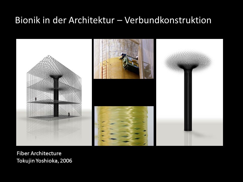 Bionik in der Architektur – Verbundkonstruktion