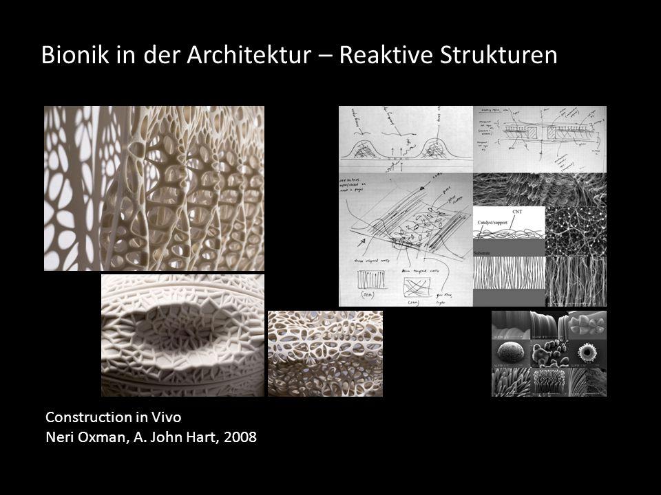 Bionik in der Architektur – Reaktive Strukturen