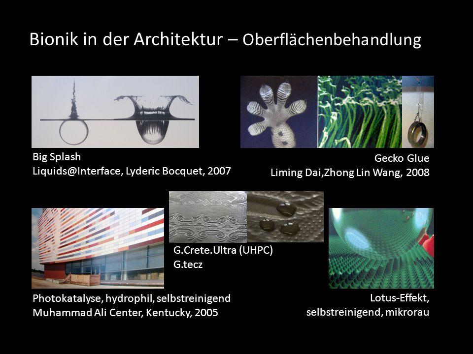 Bionik in der Architektur – Oberflächenbehandlung