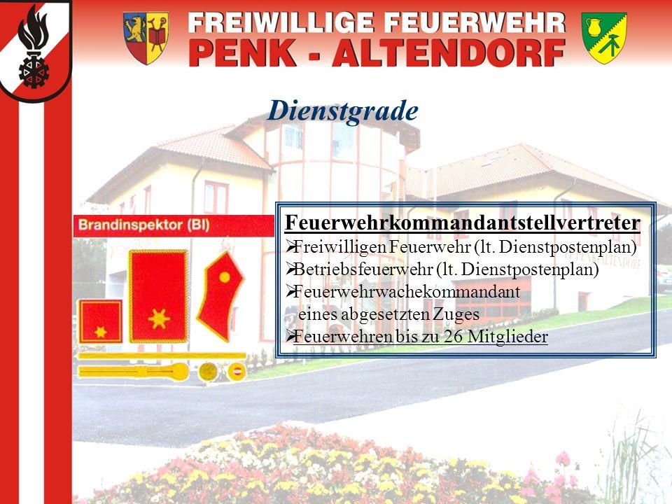Dienstgrade Feuerwehrkommandantstellvertreter