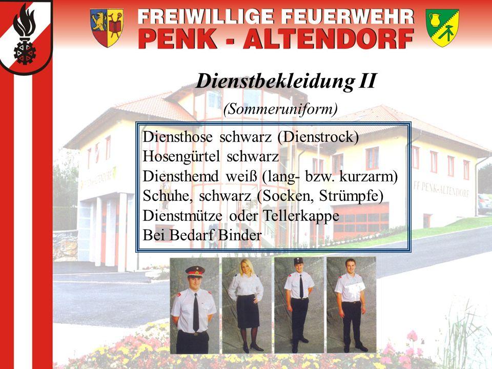 Dienstbekleidung II (Sommeruniform) Diensthose schwarz (Dienstrock)