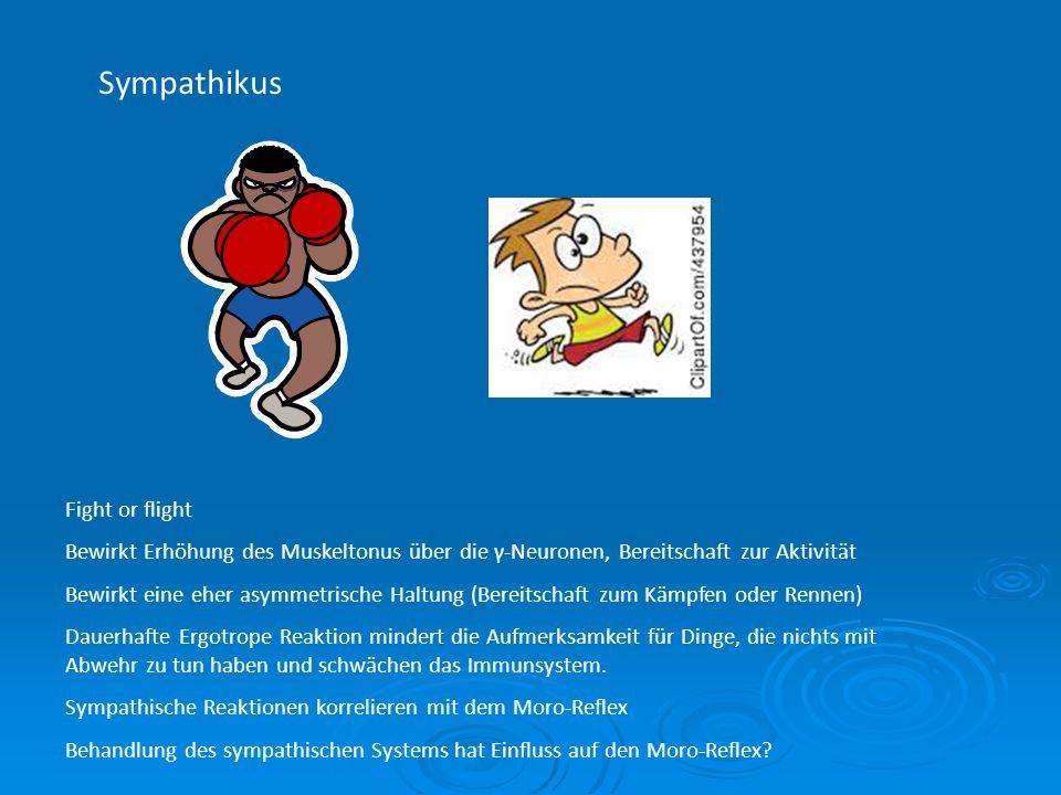 Sympathikus Fight or flight