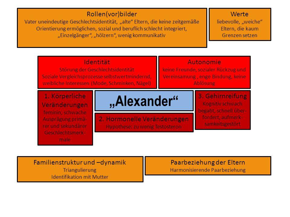 """""""Alexander Rollen(vor)bilder Werte Identität Autonomie 1. Körperliche"""