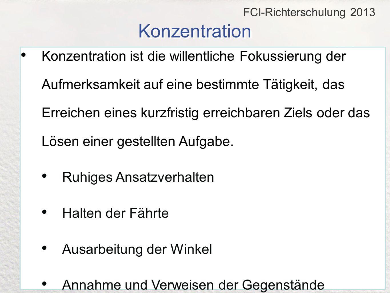 FCI-Richterschulung 2013 Konzentration.