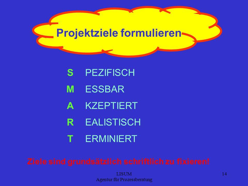 Projektziele formulieren