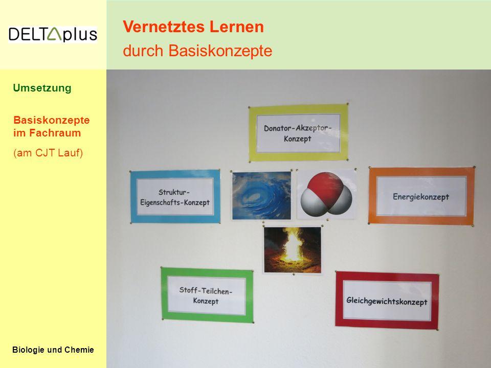 Vernetztes Lernen durch Basiskonzepte Umsetzung