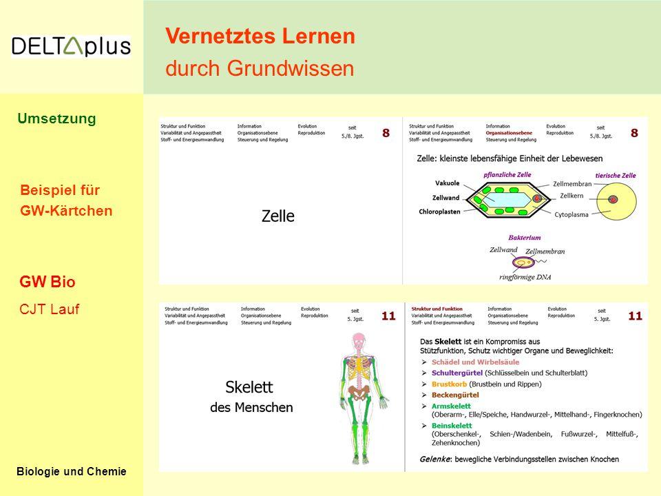 Vernetztes Lernen durch Grundwissen GW Bio Umsetzung Beispiel für