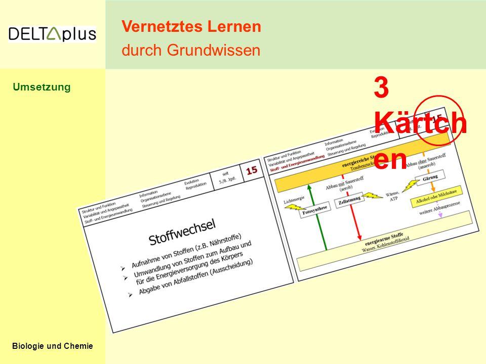 Vernetztes Lernen durch Grundwissen 3 Kärtchen Umsetzung