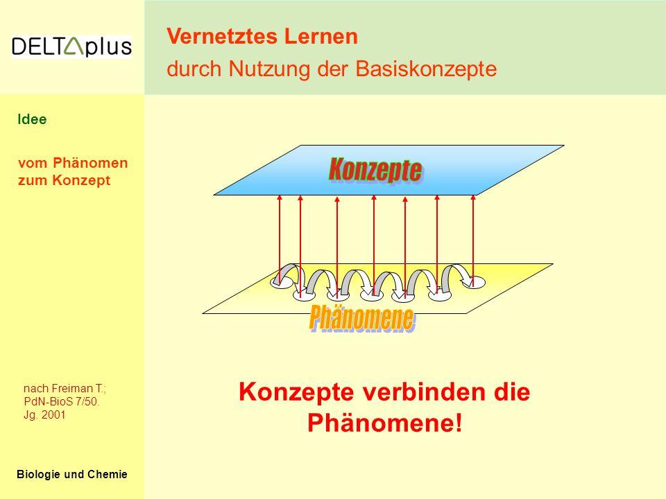 Konzepte verbinden die Phänomene!