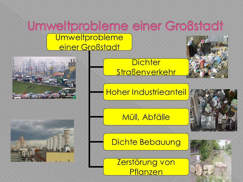 Umweltprobleme einer Großstadt