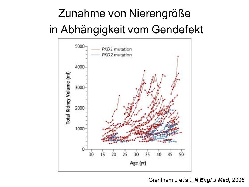 Zunahme von Nierengröße in Abhängigkeit vom Gendefekt