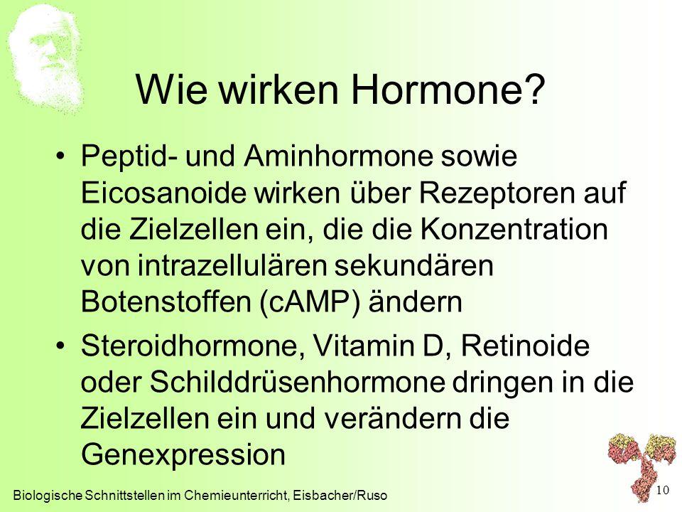 Wie wirken Hormone