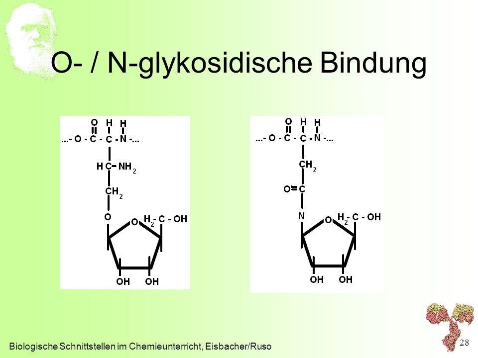 O- / N-glykosidische Bindung