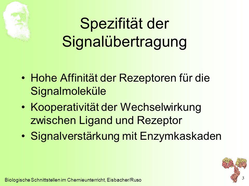 Spezifität der Signalübertragung