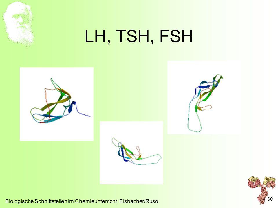 LH, TSH, FSH Biologische Schnittstellen im Chemieunterricht, Eisbacher/Ruso