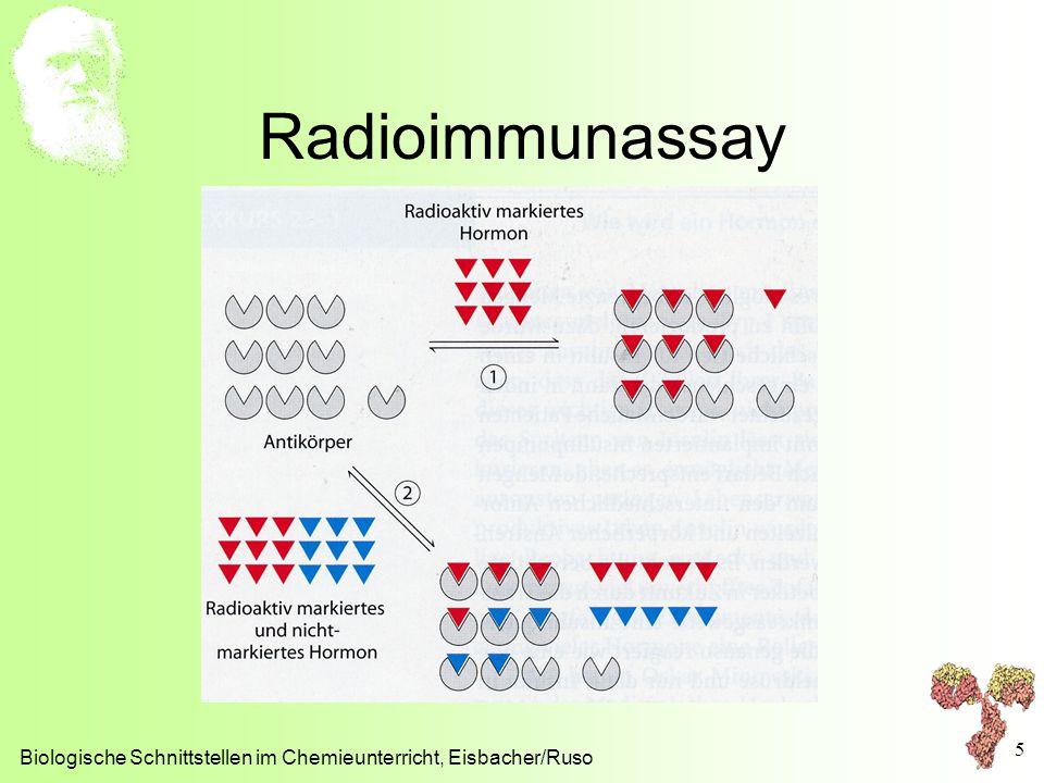 Radioimmunassay Biologische Schnittstellen im Chemieunterricht, Eisbacher/Ruso