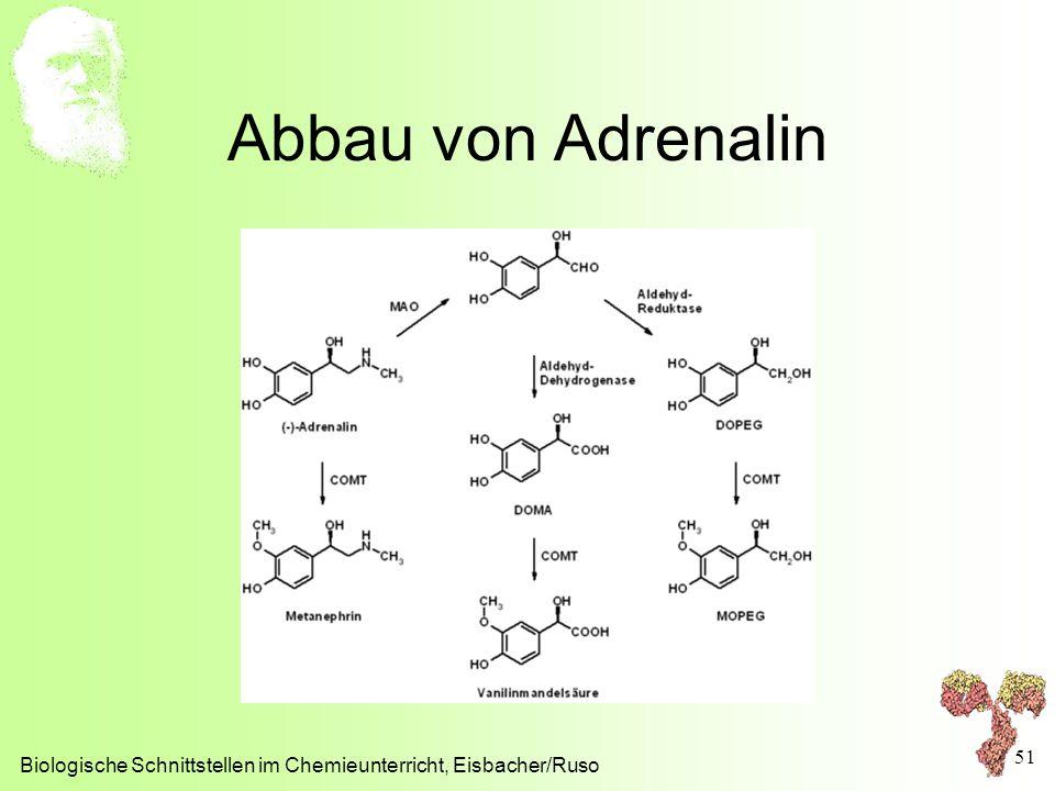 Abbau von Adrenalin Biologische Schnittstellen im Chemieunterricht, Eisbacher/Ruso