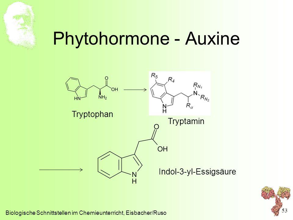 Phytohormone - Auxine Tryptophan Tryptamin Indol-3-yl-Essigsäure