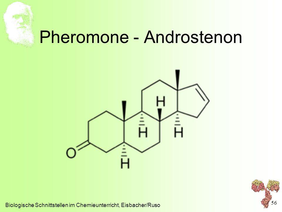 Pheromone - Androstenon