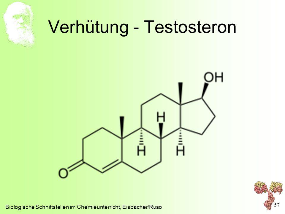 Verhütung - Testosteron