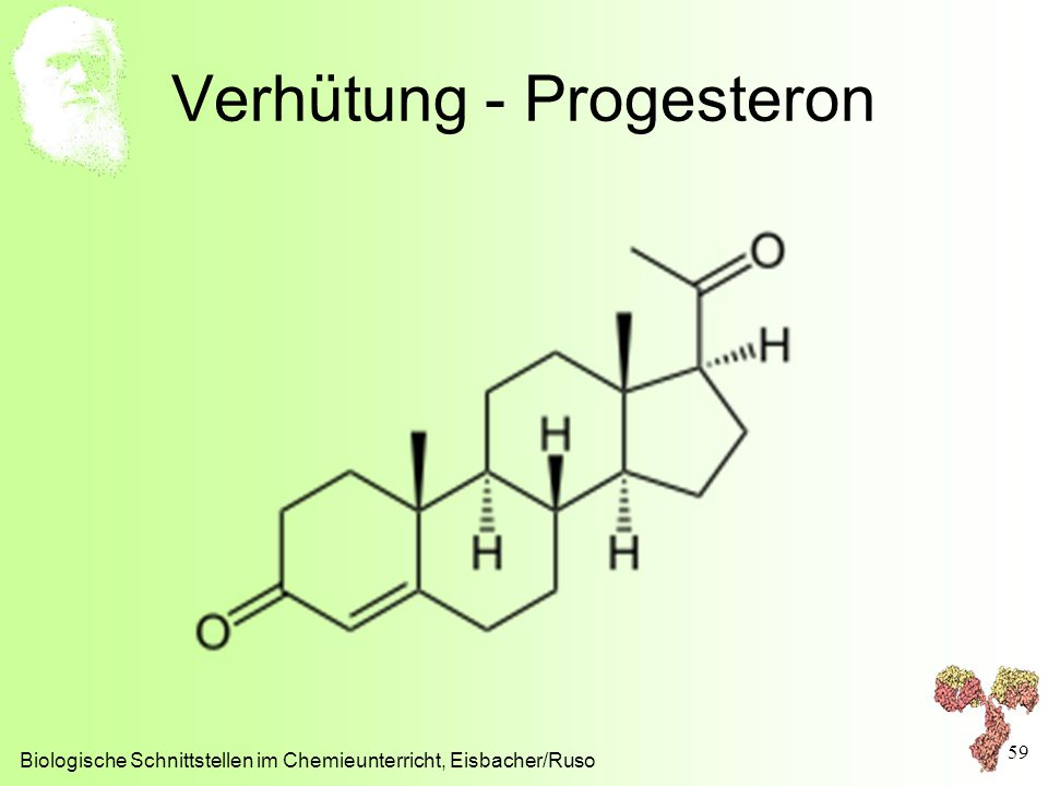 Verhütung - Progesteron