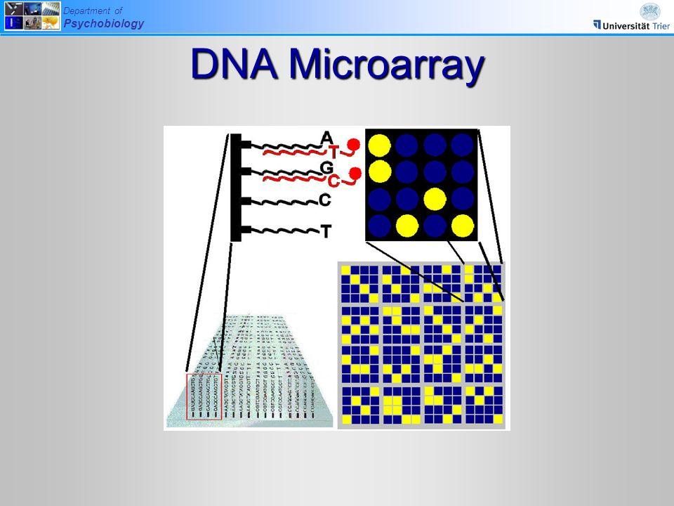 DNA Microarray Entwicklung der verschiedenen Methoden seit den 90er Jahren
