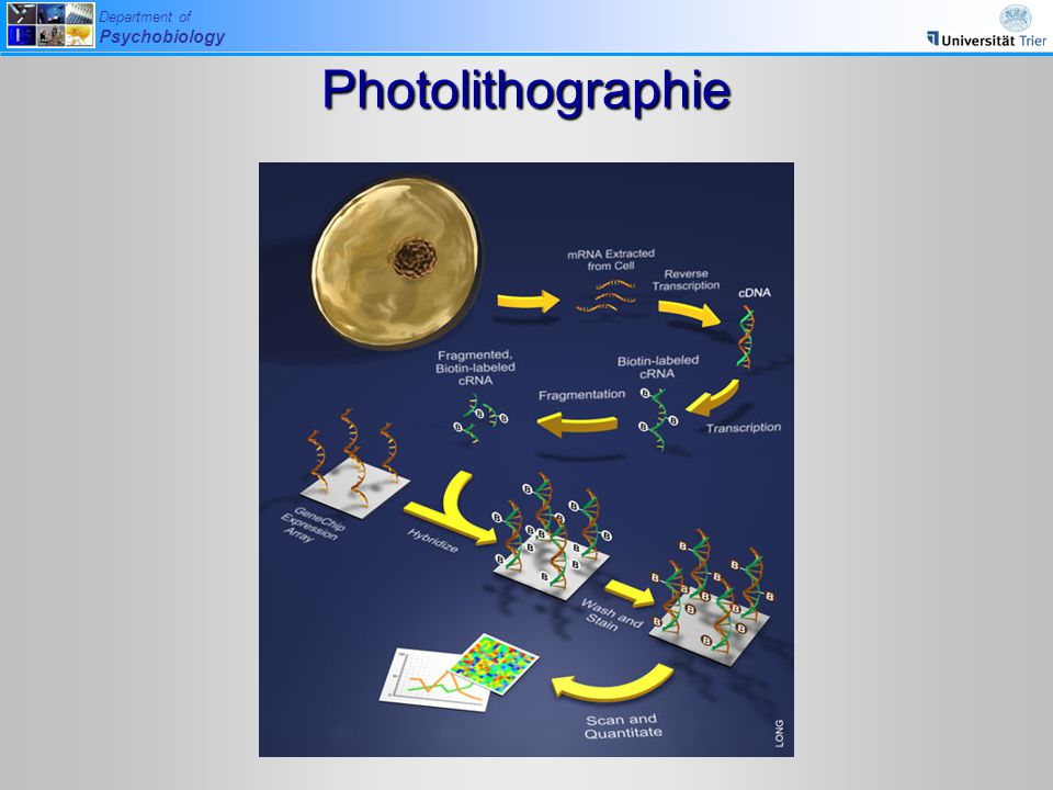 Photolithographie