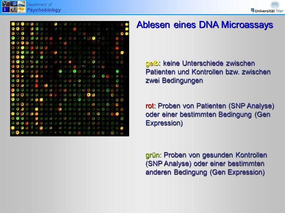 Ablesen eines DNA Microassays