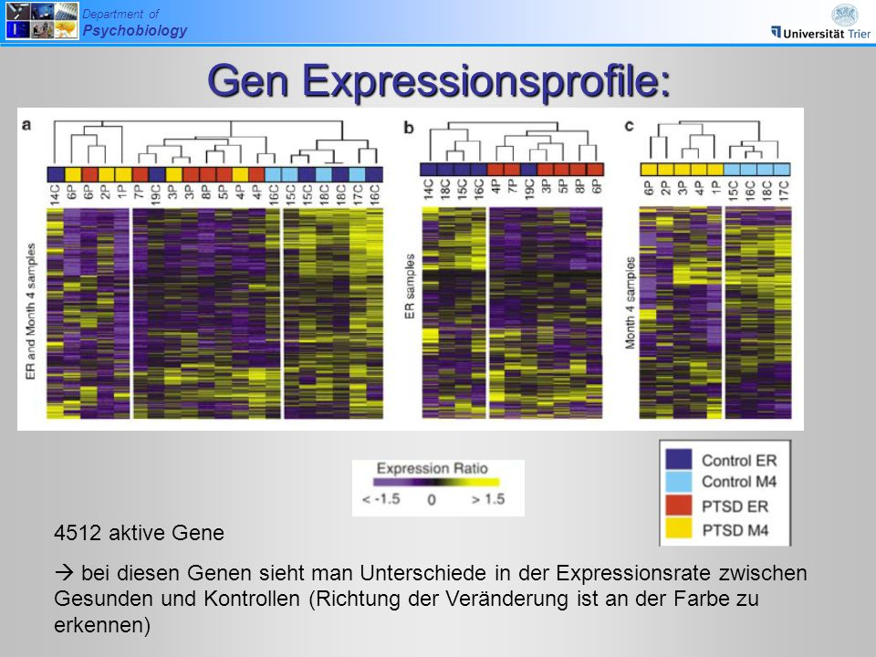 Gen Expressionsprofile: