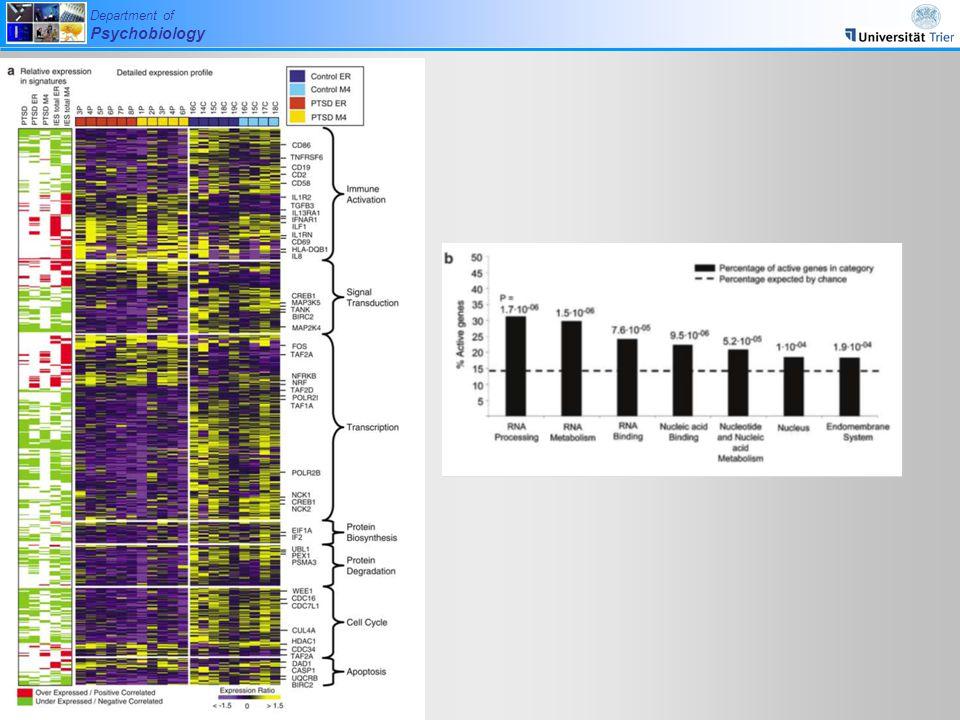 das hier sind die Gene, die zwischen Gesunden und PTSD Betroffenen unterschiedlich exprimiert sind PLUS die Gene, die mit den Punktwerten im Fragebogen korrelieren.