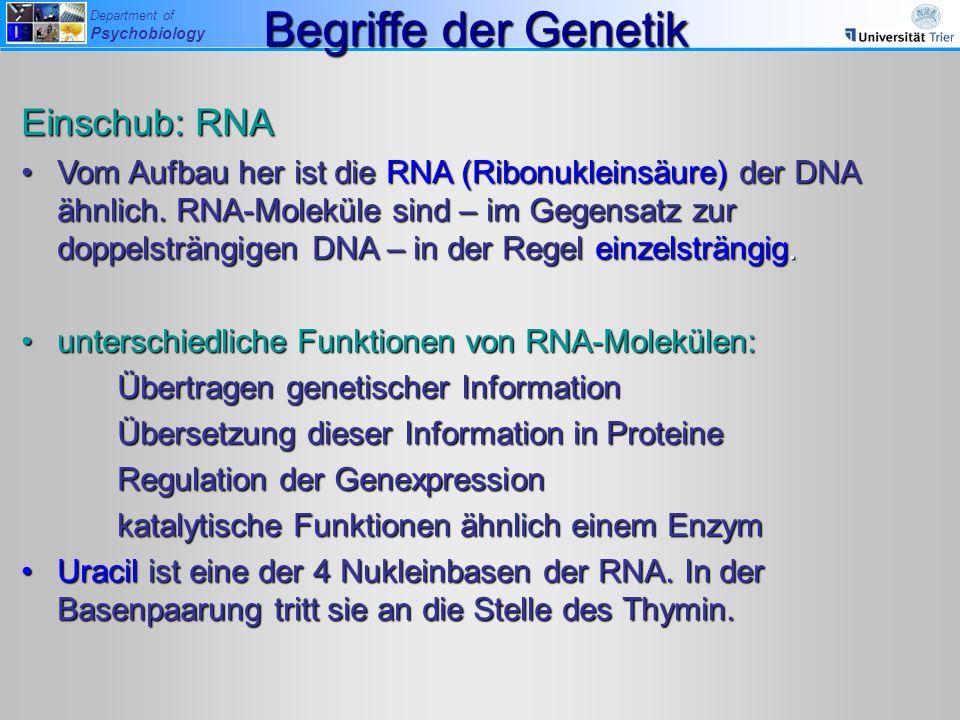Begriffe der Genetik Einschub: RNA