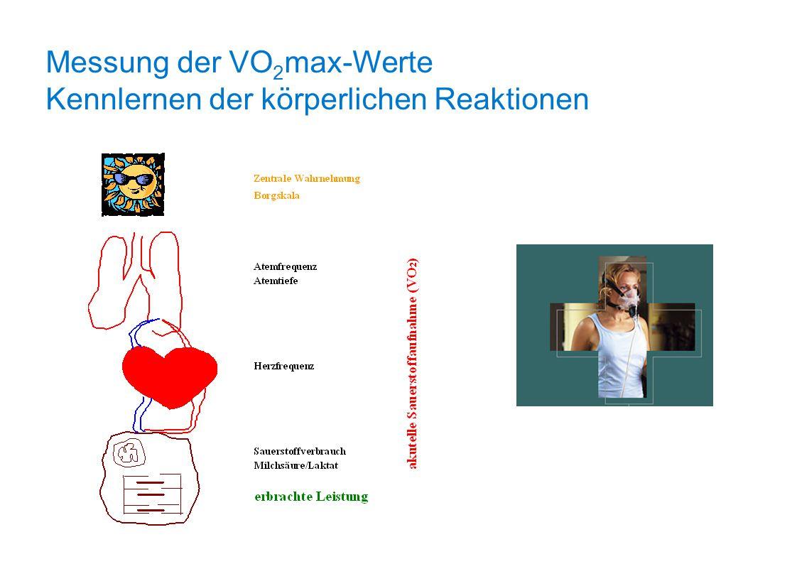 Messung der VO2max-Werte