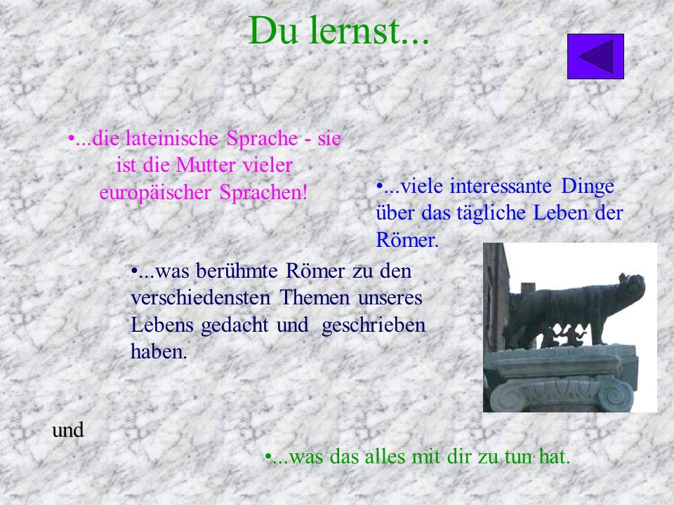 Du lernst... ...die lateinische Sprache - sie ist die Mutter vieler europäischer Sprachen!
